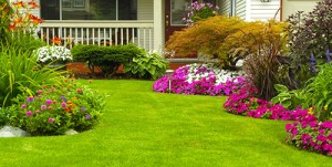 landscaping companies raleigh nc