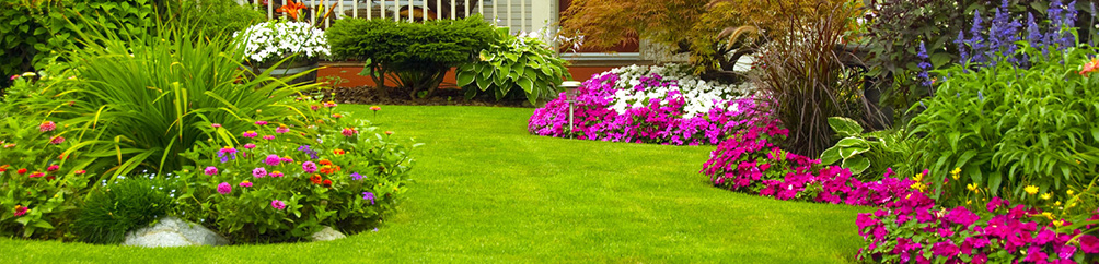 lawncare wake forest nc