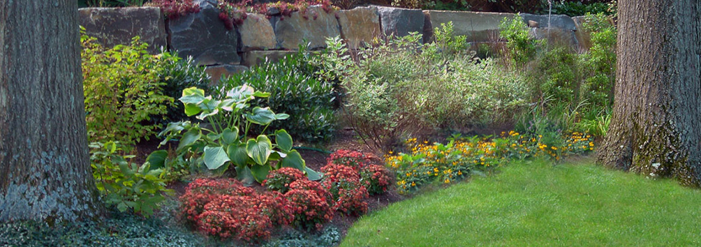 landscapers raleigh
